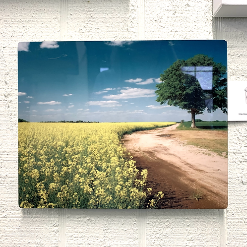 Wendy Jackson Photography on Acrylic -Dirt Road