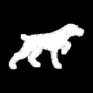 Pointer Dog (White).png