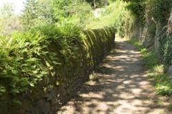 Chemin de randonnée