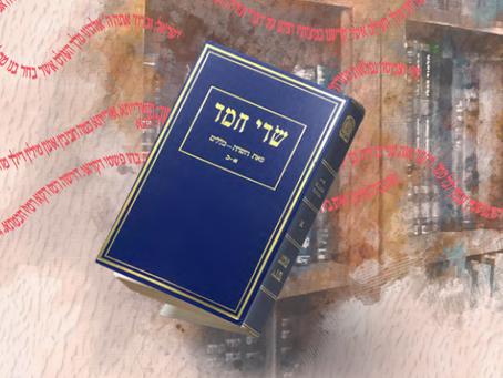 "A Spotlight on Rabbi Chaim Chizkiyahu Medini zt""l"