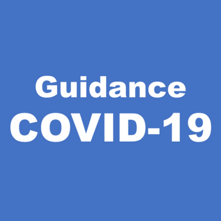 GUIDANCE FOR EMPLOYERS AND BUSINESSES UNDER THE COVID-19 EPIDEMIC
