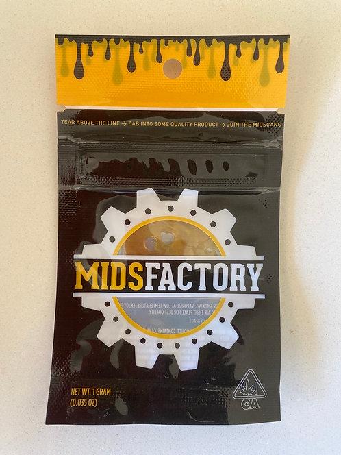 Cream Caramel by Mids Factory