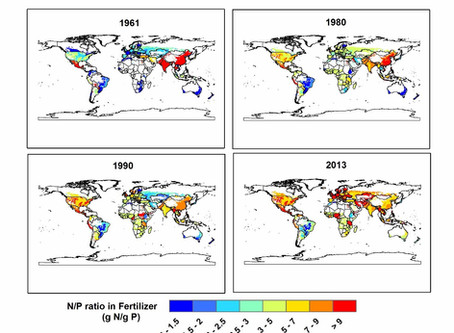 Data of Global nitrogen and phosphorus fertilizer use in the past half century