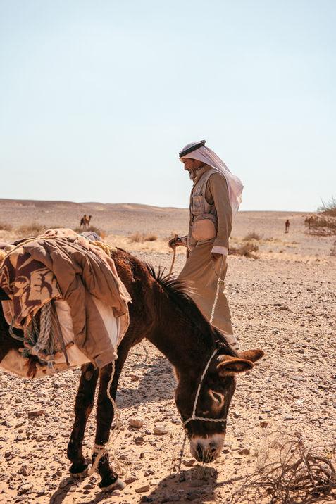 Bedouin-désert-tenant-un-âne-avec-une-co
