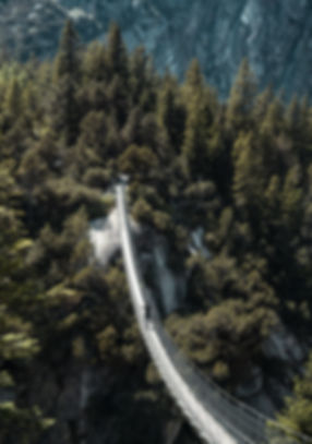 Fabio-Pont-suspendu-Handeckfall-Bridge-(
