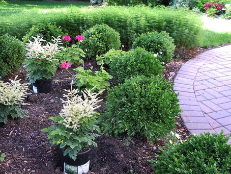 Pros and cons of landscaping with Stone and Mulch