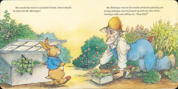 What item of clothing did Peter Rabbit lose when Mr. McGregor chased him out of his garden?