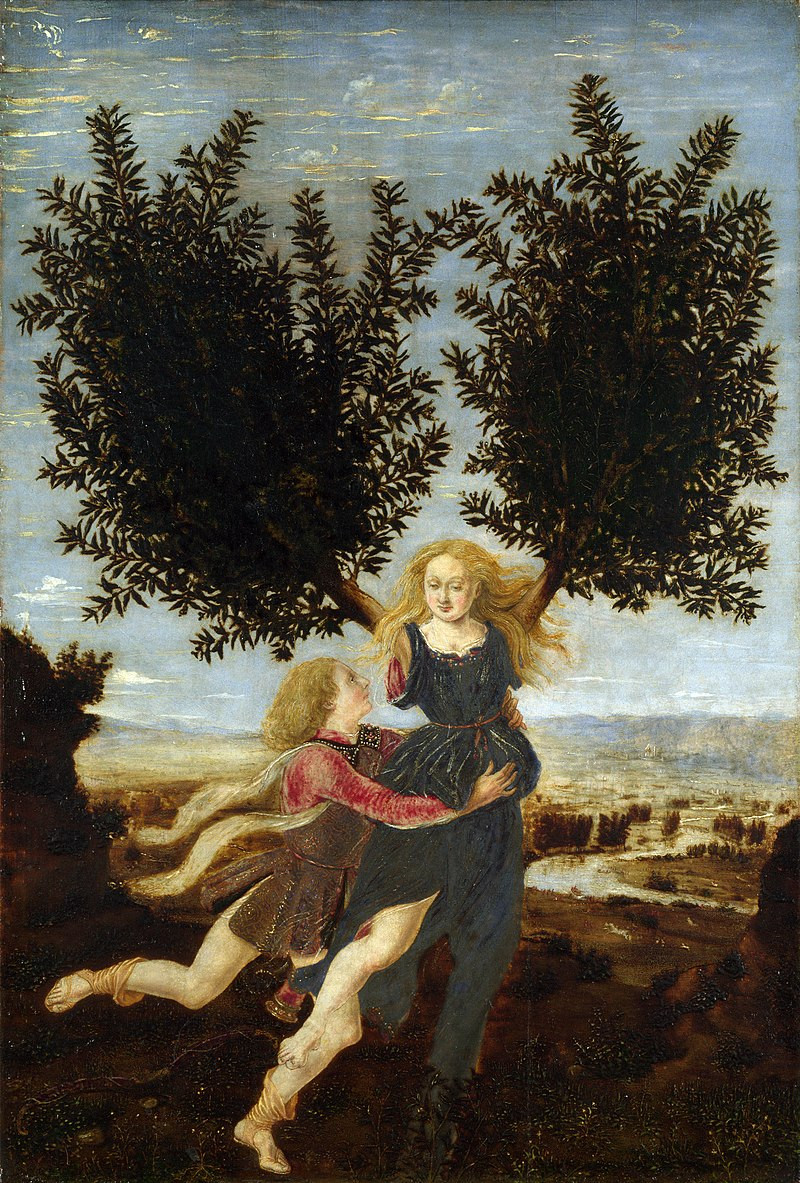 35. Apollo chased after her but when he caught her she turned into a laurel tree.