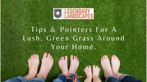 green grass family feet safe legendary landscapes Hamilton