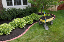 Professional Landscaping services for yo