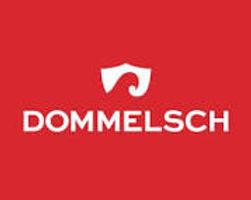 dommelsch logo.jpg