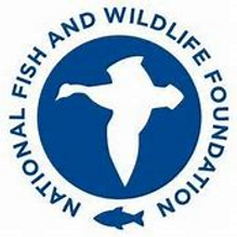 nfwf logo revised.png