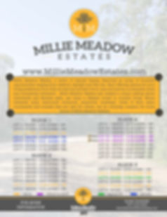 Millie_COMBINED FLYER_Page_2.jpg