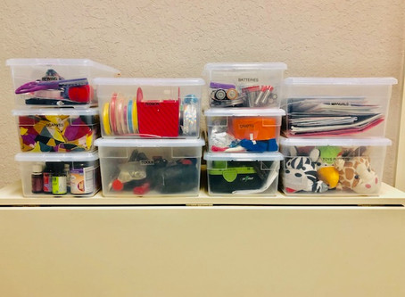 Why Clear Plastic Shoe boxes are Pro Organizer's #1 Choice.