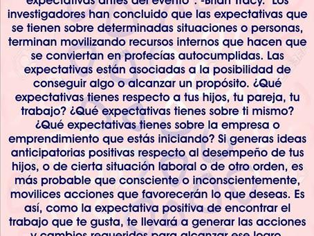Diario de Meditación