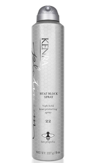 Kenra Platinum Heat Block Spray 22