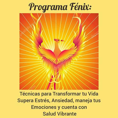 Programa Fénix