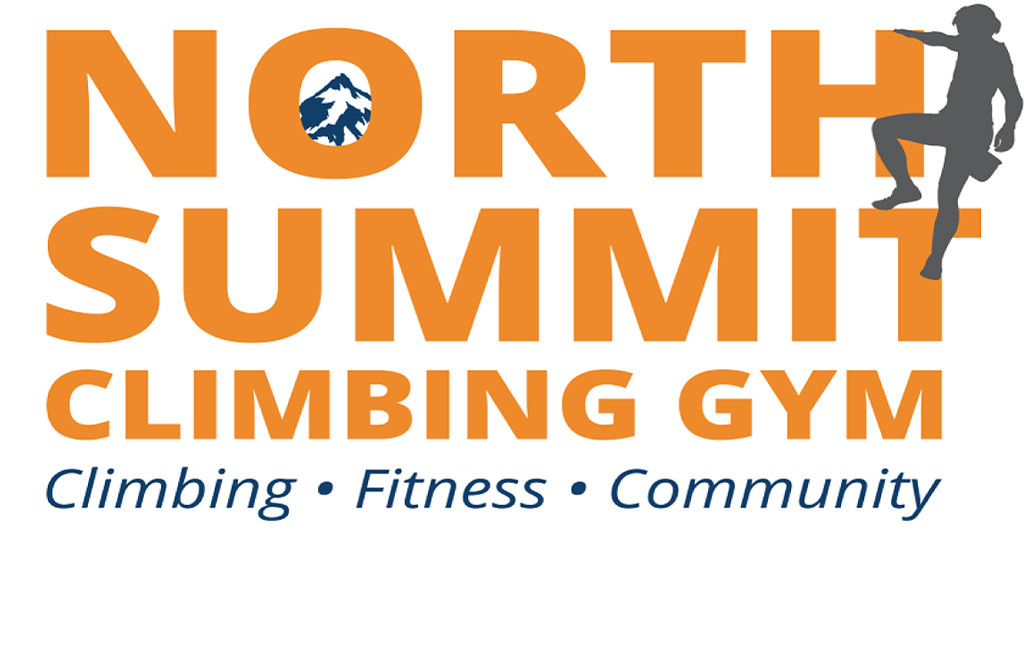 north summit logo for button white back