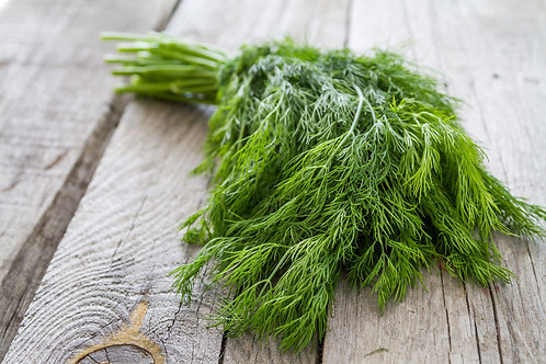Wild Fernleaf Dill (Infused) Olive Oil