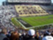 New_Orleans_Saints_at_Tiger_Stadium.jpg