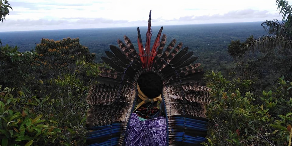 !!!VOLZET !!!  The Amazon Forest : 'A Love Story'