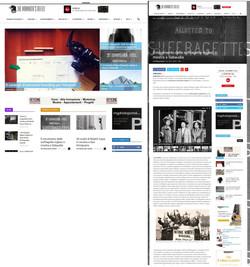 themammothreflex_com_voto_e_libertà