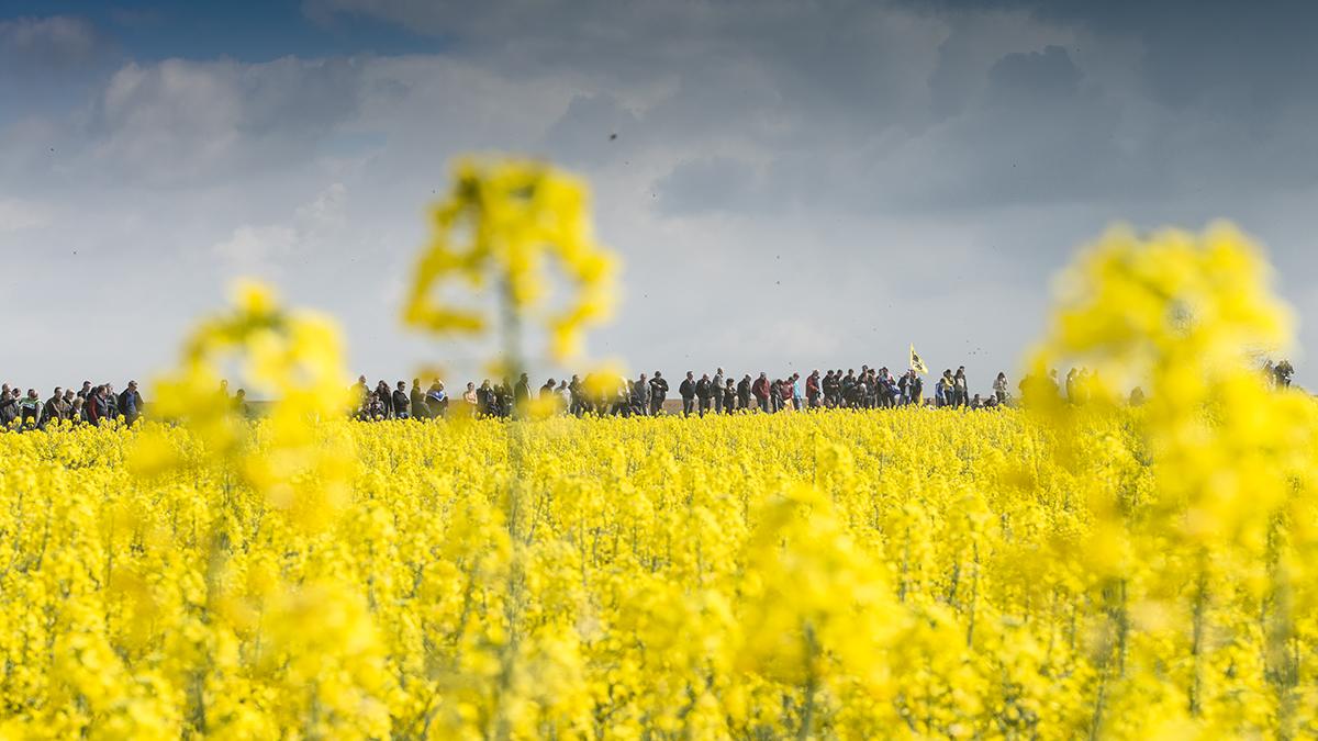 Paris – Roubaix (F) – spettatori