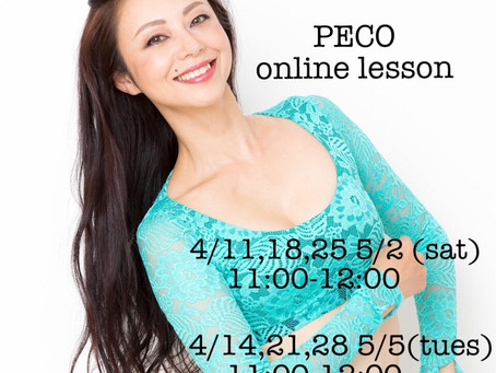 【PECO online lesson】