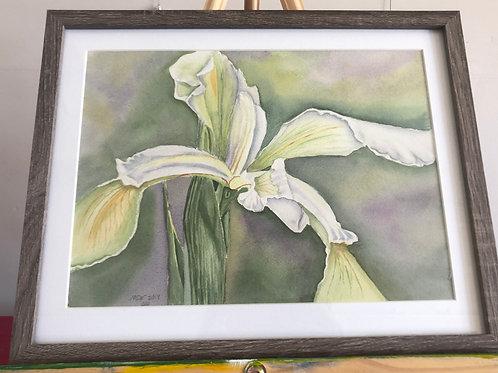 Original Watercolor by Martha Woodall