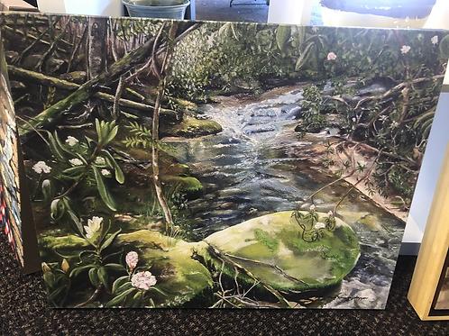 Creek- Beyond the Rock by Jan Dappen