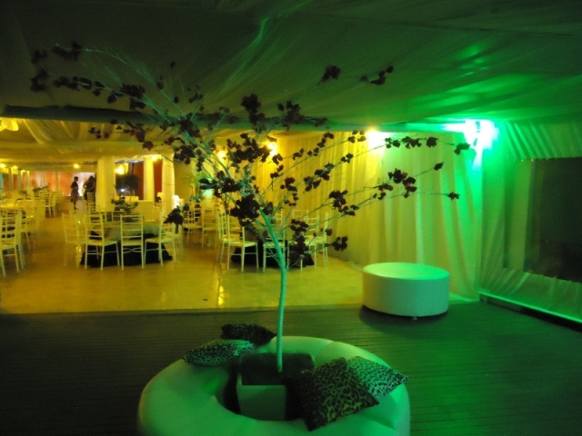 Galeria Africana (10).jpg
