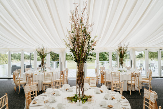 enchanted forest marquee styling