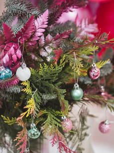 conifer christmas trees