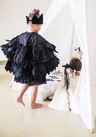Halloween shoot swan fancy dress