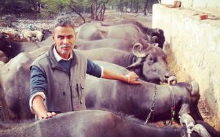 リアルインド!インド人庶民のお宅訪問と周辺散策