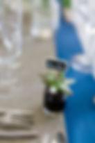 Petite crassulacée en cadeau d'invité et marque-place