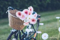 Sylvieborderie-fleuriste-mariage-agassac