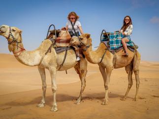 camel-4785794_1920.jpg