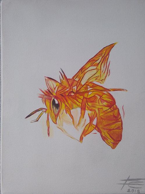 La Abeja de Clifford - Clifford's Bee