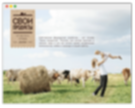 Сайт на wix для магазина фермерских продуктов