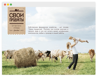 wix website for dairy brand