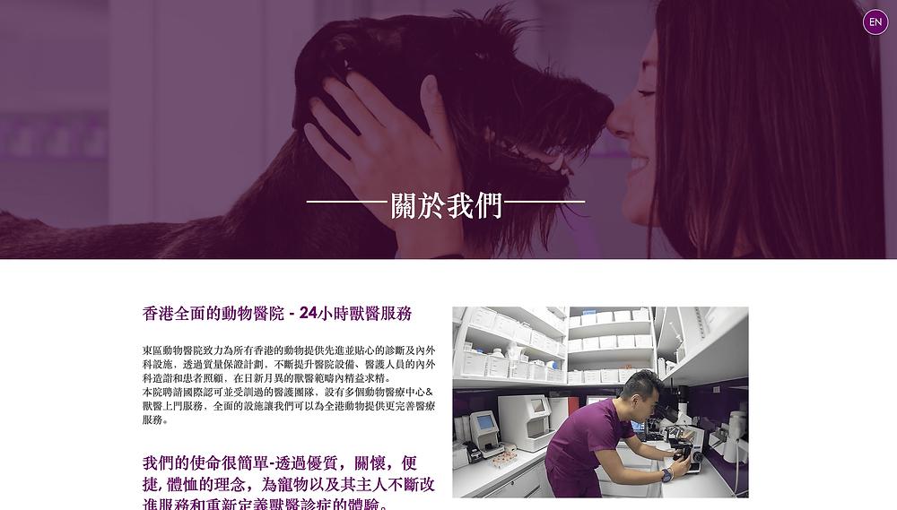 Дизайн сайта на wix