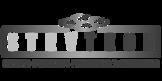 IMG_Client-Logo_StevTech.png