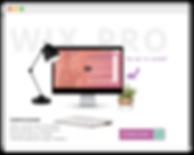 wix pro website