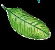 листья3.png