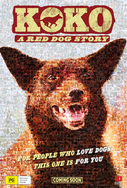 KOKO - A RED DOG STORY
