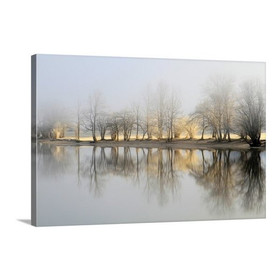January Morning Framed Photographic Print in Blue/Gray/Beige
