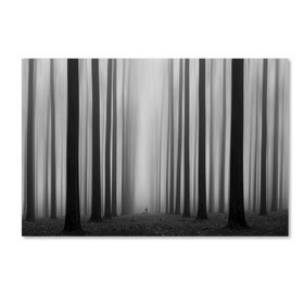 'La' rinth' Photographic Print on Wrapped Canvas