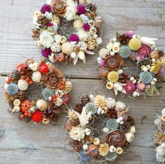 Daisy dried flowers