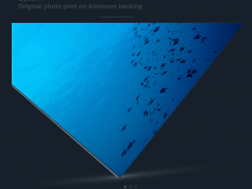 Original Photo print on Aluminum backing